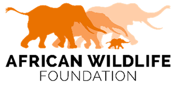 Logo African Wildlife Foundation