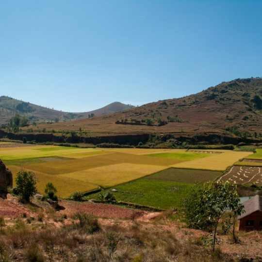 Madagascar countryside