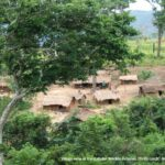 Empowering Communities to Protect Forest Ecosystems