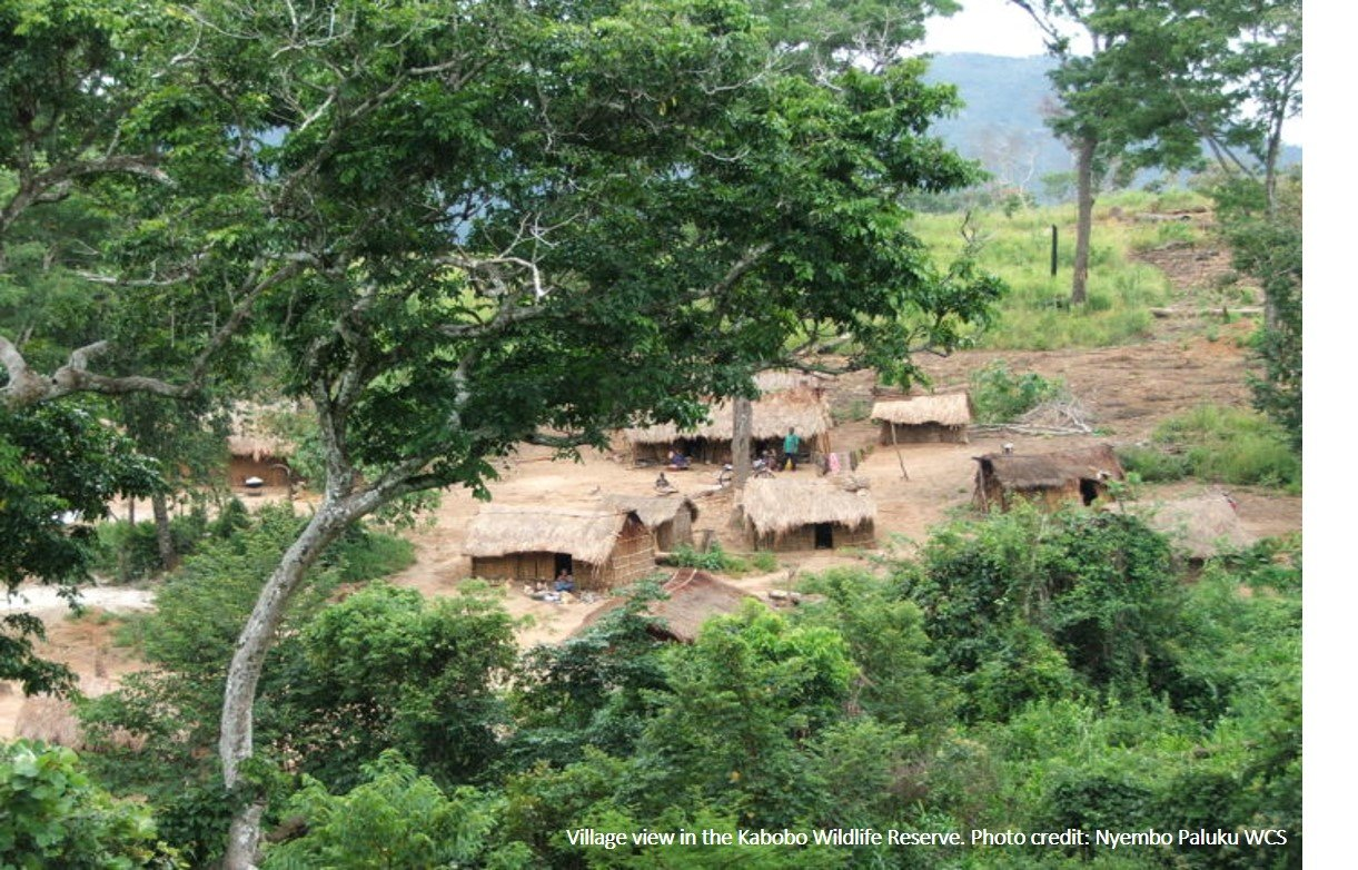 Village view in the Kabobo Wildlife Reserve.Photo credit: Nyembo Paluku, WCS