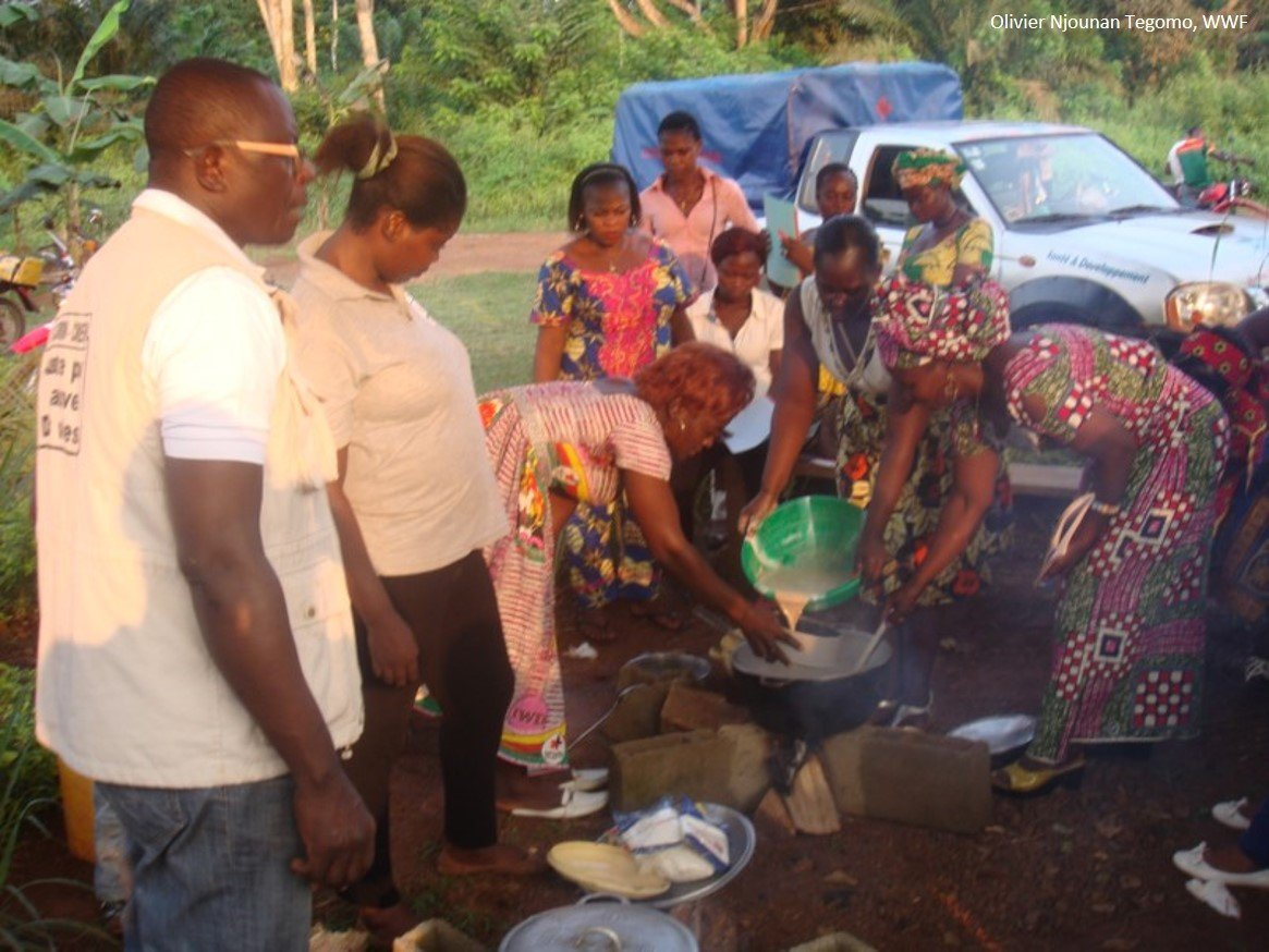 PHE Nutrition Activities in Southeastern Cameroon by WWF