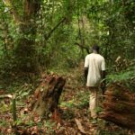 Nature Protected and Lives Impacted: ABCG Success Stories