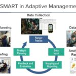 Improving Effectiveness of Protected Areas Globally Using SMART Tool