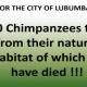 PASA_Chimpanzee Trade brownbag