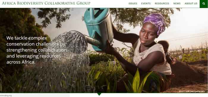 Website redesign homepage