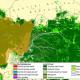 Gorilla subspecies and land cover Congo Basin