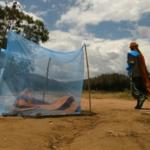 Global Health and Biodiversity
