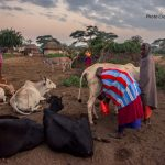 Empowering Communities in Tanzania to Adapt to Climate Change through Locally Led Interventions