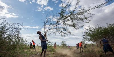 ABCG TNC invasion removal in Tanzania photo. Credits to Roshni Lodhia